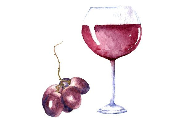 Illustration from wineglass with a grape
